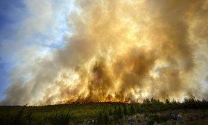 Požari še naprej pestijo Balkan, v Italiji aretirali domnevna požigalca