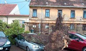 Orkanski veter razdejal Sisak in Petrinjo, v BiH ena smrtna žrtev