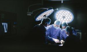 V ZDA človeku prvič presadili prašičjo ledvico, ki je imunski sistem ni takoj ...