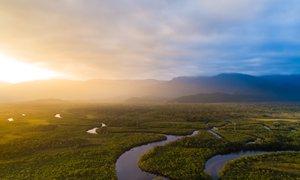 Največje krčenje amazonskega pragozda v zadnjih 12 letih