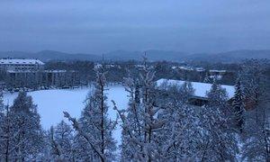 Zapadlo do 40 centimetrov snega: zimska idila bo kratkotrajna