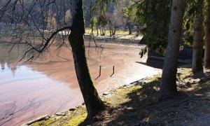 Obiskovalci Blejskega jezera zaskrbljujoče pogledujejo proti rdeče obarvani ...
