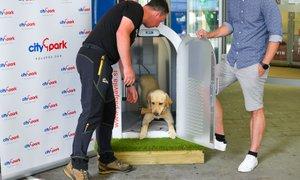 Slovenija dobila prvo pametno pasjo uto