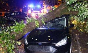 Avstrijo prizadela huda neurja: toča, podrta drevesa, poplavljene ceste in kleti