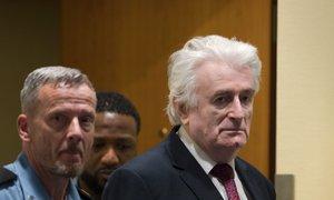 Karadžić bo preostanek kazni prestal v britanskem zaporu