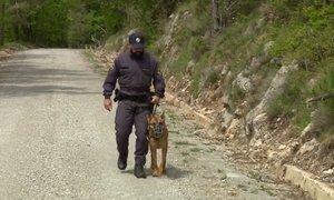 Na območju Ilirske Bistrice prijeli 122 nelegalnih prebežnikov, iskanje še ...