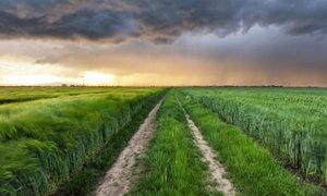 Ob nevihtah spet možni močnejši nalivi s sodro ali drobno točo