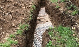 V vinogradu na severu Italije odkrili mozaik iz rimske vile