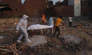Indijska različica že v 44 državah sveta, v državi presegli 250.000 smrti