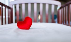 Fakin predlaga ukinitev Nacionalnega inštituta za otroške srčne bolezni