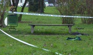 V incidentu pred dijaškim domom v Ljubljani ena oseba poškodovana, ena pridržana