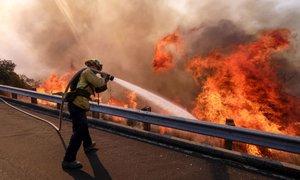 Najhujši požar v zgodovini zahteval že 42 življenj