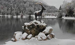 Večji del Slovenije bo pobelil prvi sneg