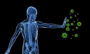 Znanstveniki odkrili metodo, ki bi lahko vodila do univerzalnega zdravila za ...
