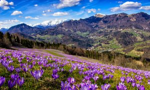 Prekrasen, a pogosto prezrt slovenski kraj, ki vas bo navdušil