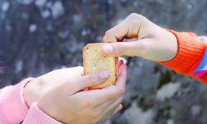 Lakota v Sloveniji: kos sira le za praznike, sladkana voda za čez dan
