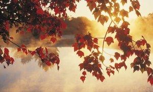 Začetek meteorološke jeseni v znamenju sonca in višjih temperatur