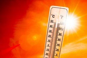 Hrana, ki hladi ali kako si lahko v vročini pomagate z živili