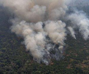 'Z vsakim mega požarom se verjetnost, da bomo stvari spravili v red, zmanjša'