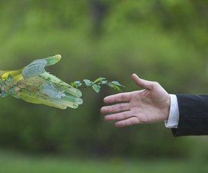 Bruselj: Za rešitev planeta potrebujemo ogromno zasebnega denarja in ...
