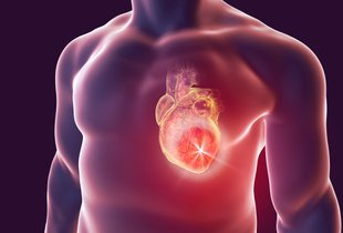 Dr. Marija Pfeifer: 'Brez hormonov ni življenja. In če so uravnovešeni, se ...
