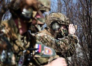 Referenduma o investicijah v vojsko ne bo