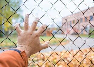 Novi prebivalci Černobila: 'Sevanje nas lahko ubije počasi, a na nas ne strelja'