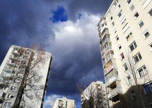 Rast cen v Sloveniji najvišja na svetu