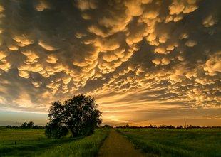 Zakaj nastane nevihta in kdaj se bo iz nevihte razvilo neurje?