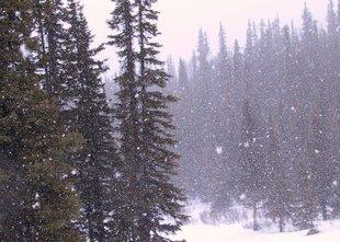 Dosegla nas je fronta s padavinami, meja sneženja se spušča