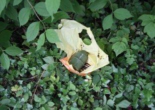 Ljutomerčanka med košnjo našla vrečko z bombo in naboji