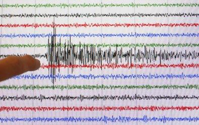 Primer seizmograma po potresu na Haitiju.
