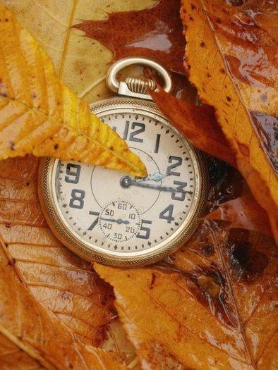 Urni kazalci se vsako zadnjo nedeljo v marcu premaknejo z 2. na 3. uro in jeseni obratno.