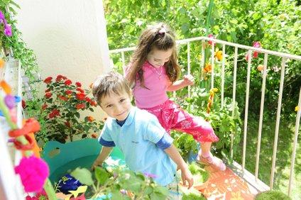 Lahko se odločite za nezahtevno balkonsko cvetje.