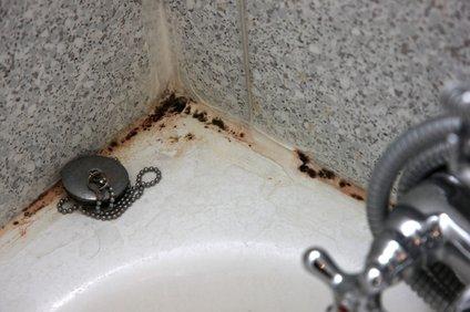 Plesen v kopalnici