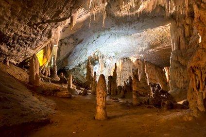 """""""Slikovit je podatek, da bomo že v nekaj tednih imeli več zaposlenih kot obiskovalcev,"""" so zapisali v Postojnski jami."""