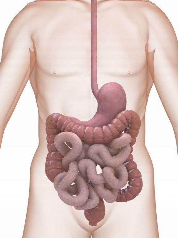 Divertikuloza in divertikulitis sodita med patologijo debelega črevesa.