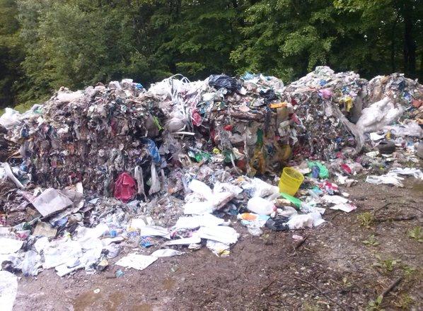 V okolici Ljubljane nekdo ob cesti in gozdni poti odvrgel goro smeti