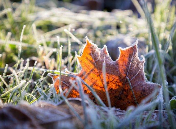 Zjutraj ponekod slana, še hladneje bo v sredo in četrtek