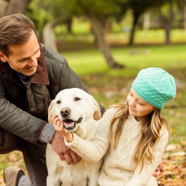 Kako si pes izbere najljubšo osebo?