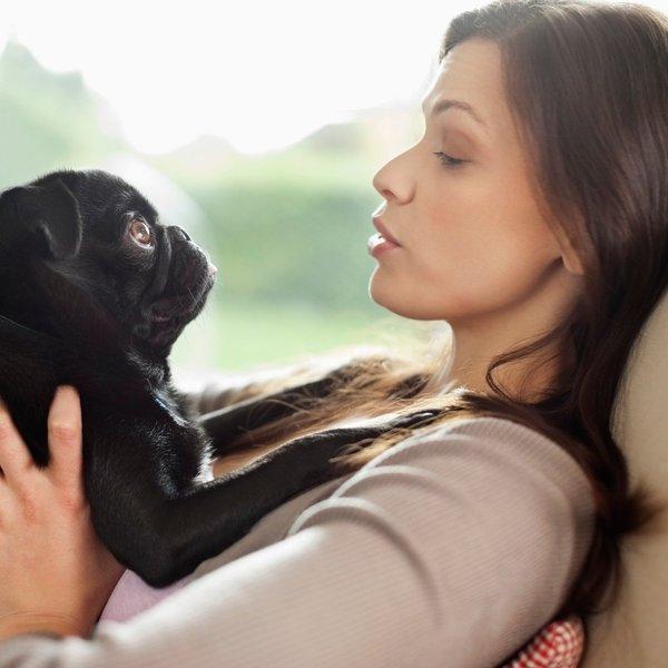 Na kakšen način psi komunicirajo z nami?