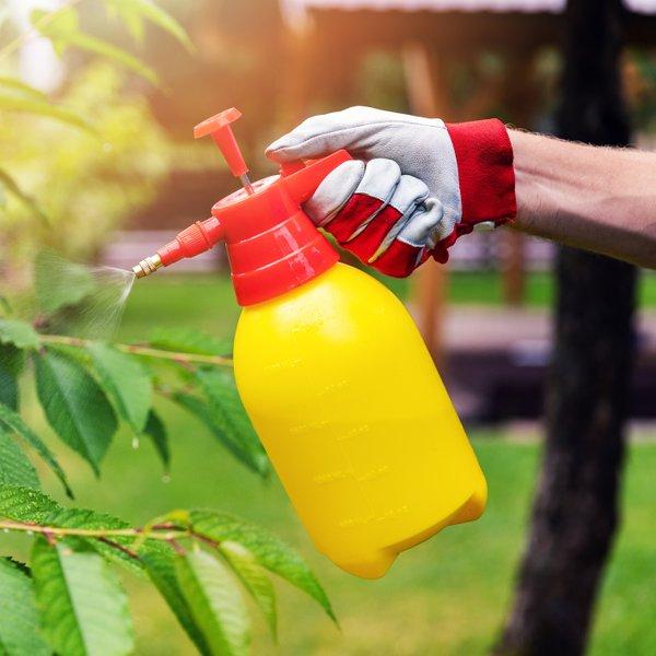 Soda bikarbona je tudi na vrtu nadvse uporabna