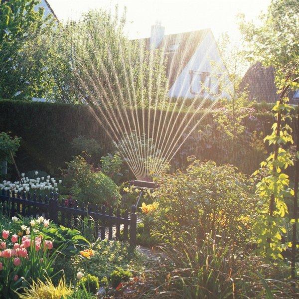 S tem trikom vam bo vrt poleti še bolj uspeval