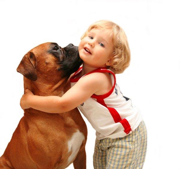 6 idealnih pasem za družine z otroki