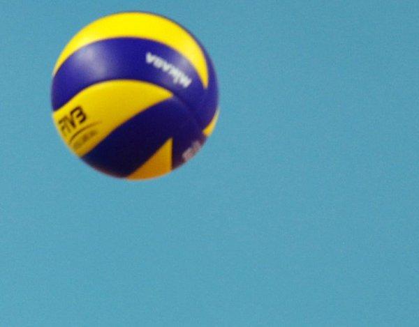 Odbojkarska žoga
