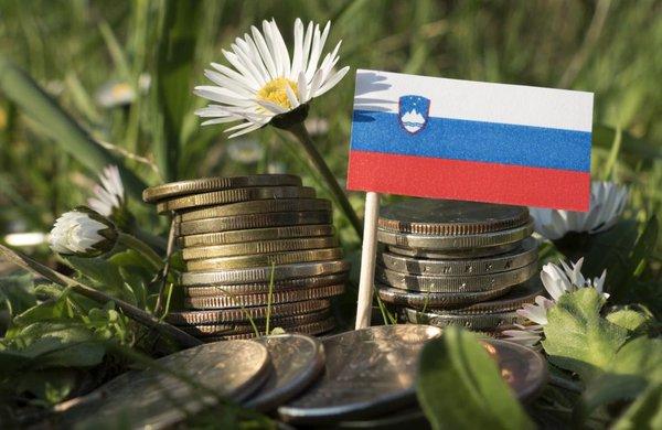Slovenska zastava in denar