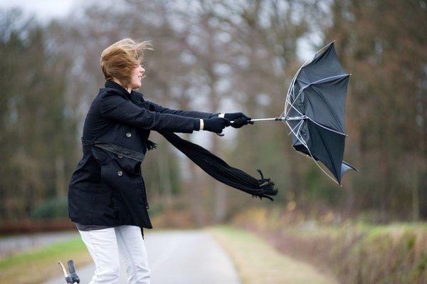 Močan veter in dežnik