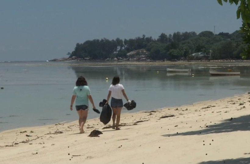 V eni sami uri prostovoljci na plažah naberejo tudi do 200 kilogramov smeti.