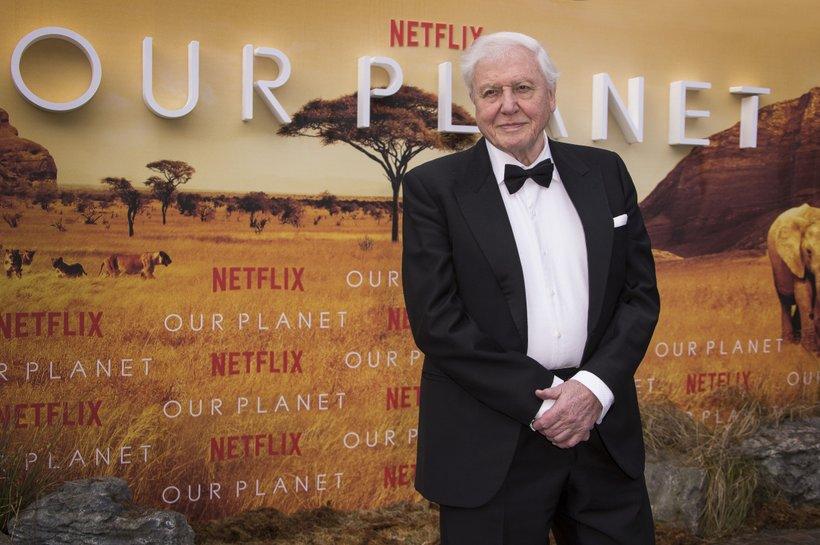 David Attenborough je ambasador organizacije WWF, naravoslovec in pripovedovalec v dokumentarni seriji Naš planet.