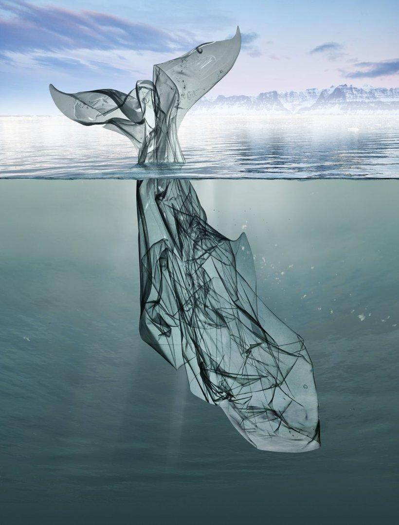 Opozarjajo na prekomerno uporabo plastičnih izdelkov.
